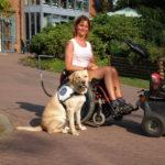 Ausbildung Behindertenbegleithund in Kropp